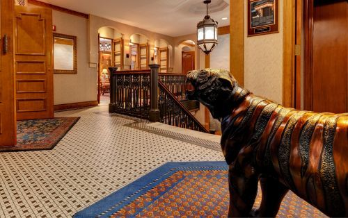 You can find our iconic, most photographed, Bogey the Tiger,on the second floor.